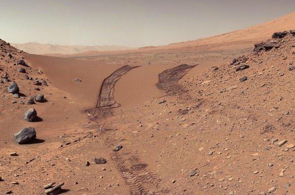 NASA самостоятельно уничтожила свидетельства жизни на Марсе
