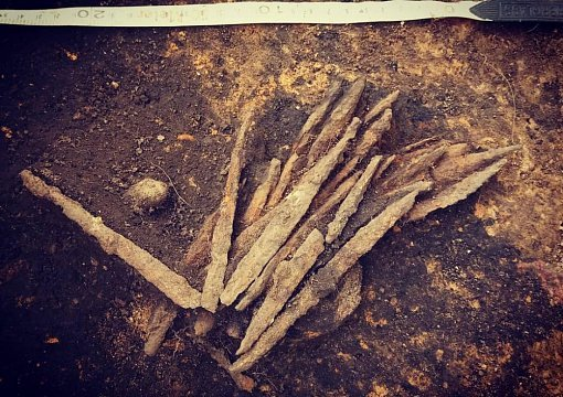 В Псковской деревне сделали уникальную археологическую находку