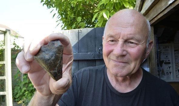Зуб 16-метровой акулы-мегалодона, жившей 3 миллиона лет назад, найден в Англии