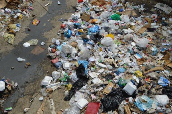 Ученые: Наночастицы в составе пластика наносят вред Мировому океану