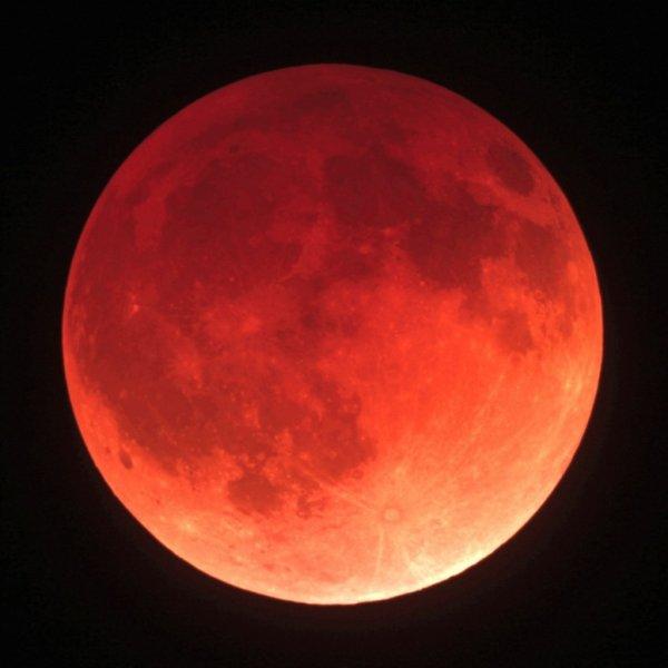 Трансляцию «кровавого» лунного затмения проведет МГУ