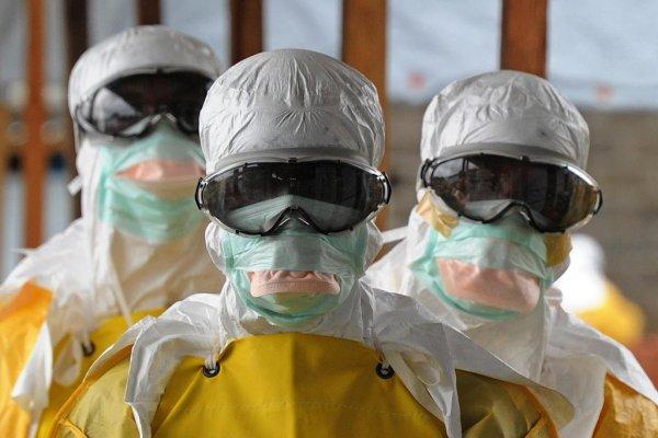 Новая глобальная эпидемия унесет жизни миллиарда человек