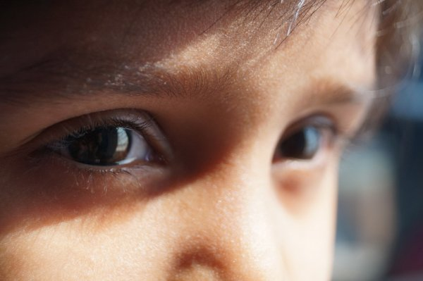 «Своеобразная матрица»: Человек видит лишь то, что показывает его мозг