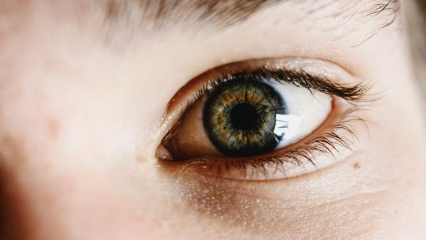 Учёные объяснили опасность синего света для зрения