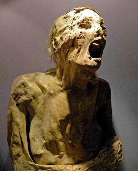 Ученые доказали, что в Древнем Египте мумифицировали до появления фараонов