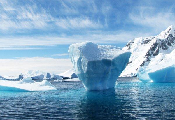 Теплые воды в Артике могут привести к катастрофе на Земле