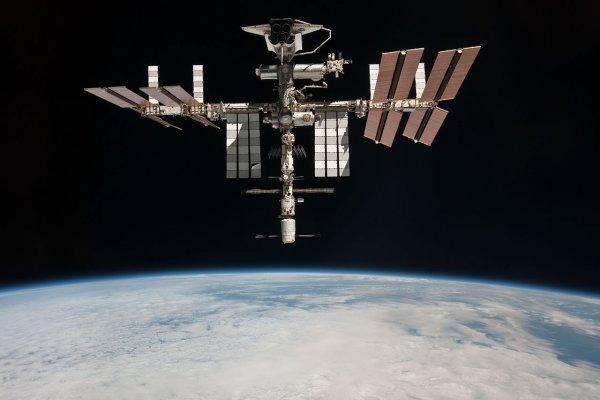 Космическая ферма на МКС произвела первый урожай