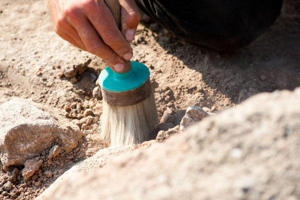 Ученые: Родовитые алиманы в гробнице хоронили не только близких