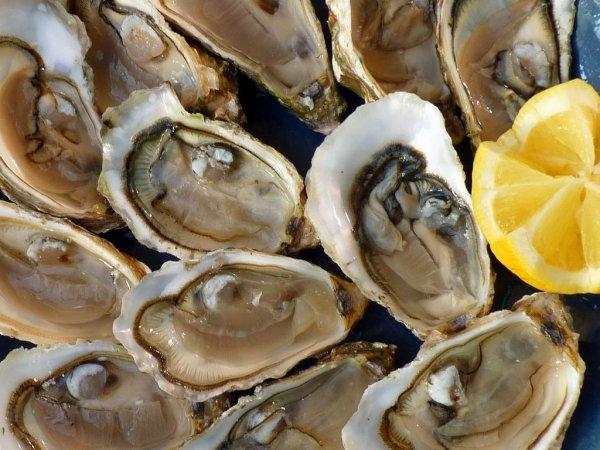 Американские учёные раскрыли, почему любители морепродуктов чаще занимаются любовью