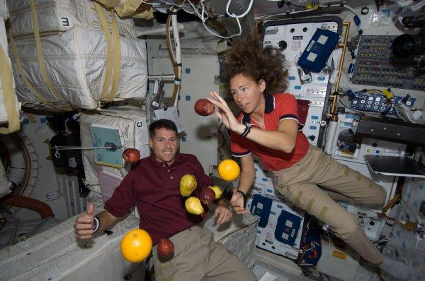 Тысячи червей помогут сохранить космонавтам мышечную массу в невесомости