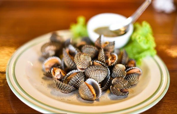 Ученые: Моллюски способны продлить жизнь и спасти от рака