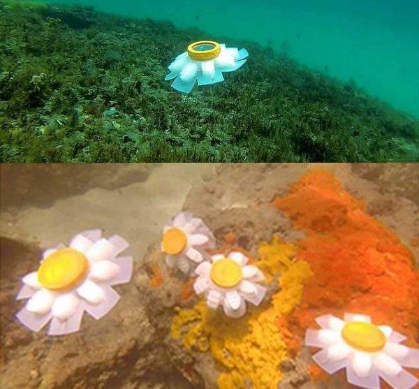 «Хранитель океанов»: Робо-медуза будет защищать слабые экосистемы