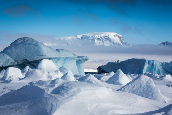 Таяние льда в Антарктиде обнажило необычный аномальный предмет