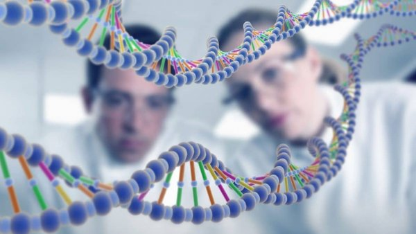 Ученые расшифровали ДНК древнейшей мумии Нового Света