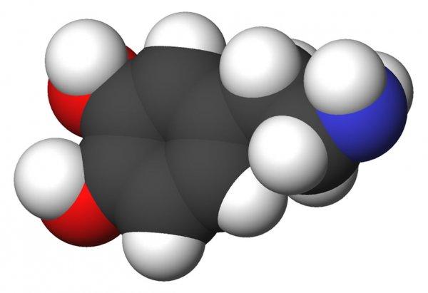 Ученые рассказали, как дофамин «подсаживает» людей на всякие вредности