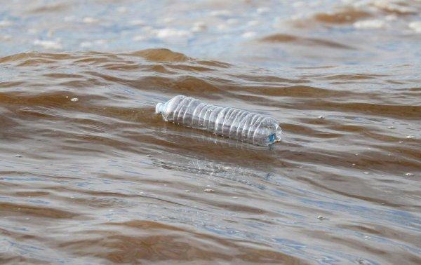 Учёные рассказали, к чему приведёт замена пластиковой упаковки