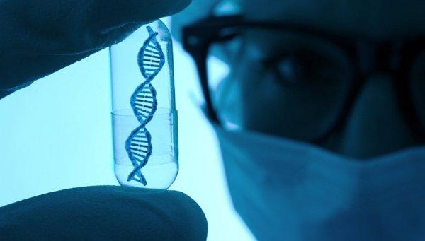 Китайцы впервые в мире создали генетически модифицированных близнецов