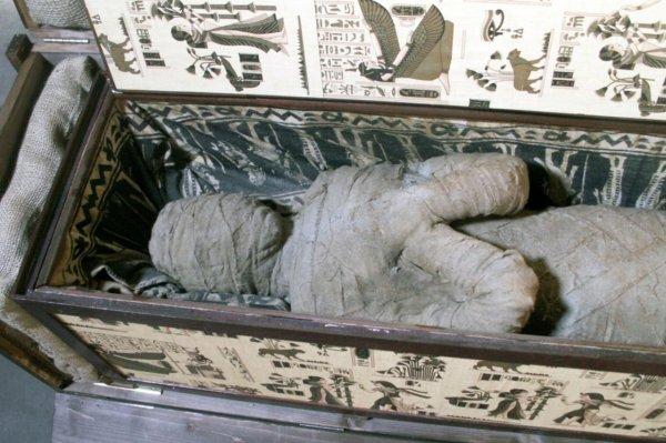 Ученые обнародовали секретные видеоматериалы о вскрытии гробницы мумии инопланетянина
