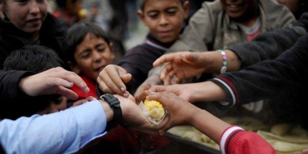 Учёные: В мире недоедают 3 миллиарда человек