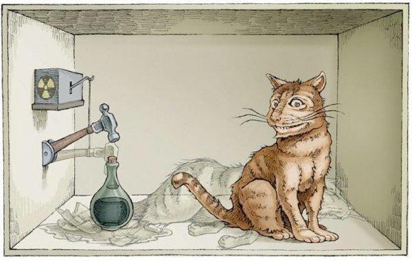 Ученые сделали оптического кота Шредингера