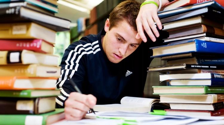 Услуги написания дипломных и других видов работ