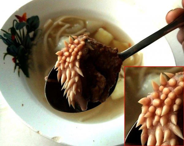 «Мясо с белыми щупальцами»: В школьном супе обнаружена внеземная форма жизни, угрожающая планете 23 февраля