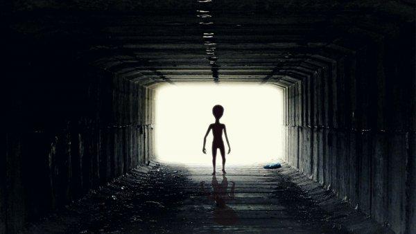Апокалипсис на пороге: Пришельцы с Нибиру уже высадились на Землю и основали базу