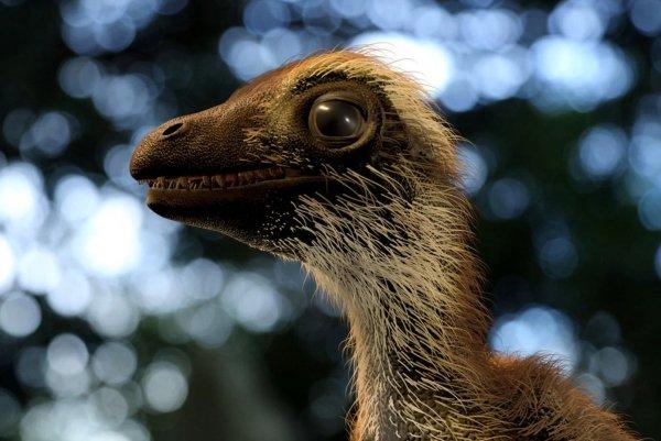 Тиранозавры оказались с перьями: Ученым удалось определить вешний вид детенышей хищников