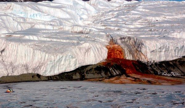 Катастрофа близко: Льды Антарктиды покрылись трещинами
