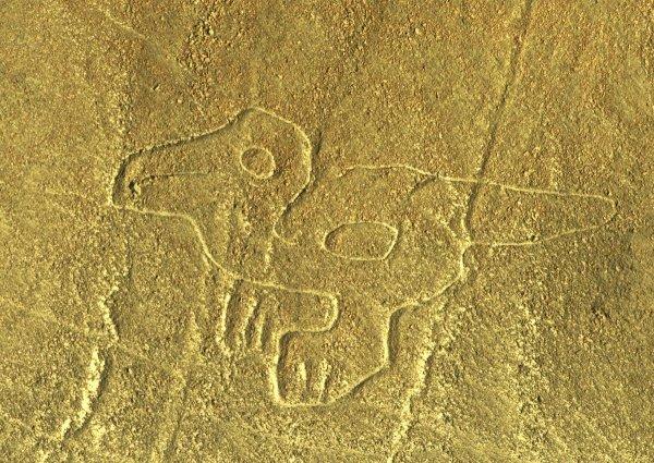 Самолёты-шпионы помогли археологам найти таинственные следы древних цивилизаций