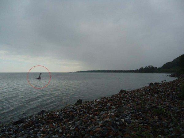 В Байкале обнаружено «чудовище» из озера Лох-Несс
