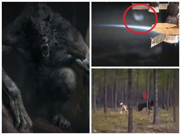 Нибиру зависла в опасной близости от МКС – Инопланетные гибриды человека и волка высадились на Камчатке