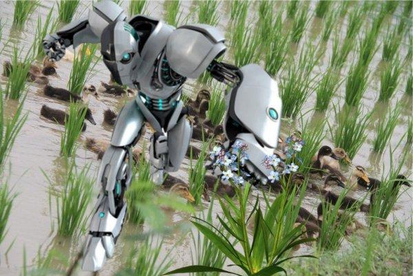 Учёные заменят уток на роботов