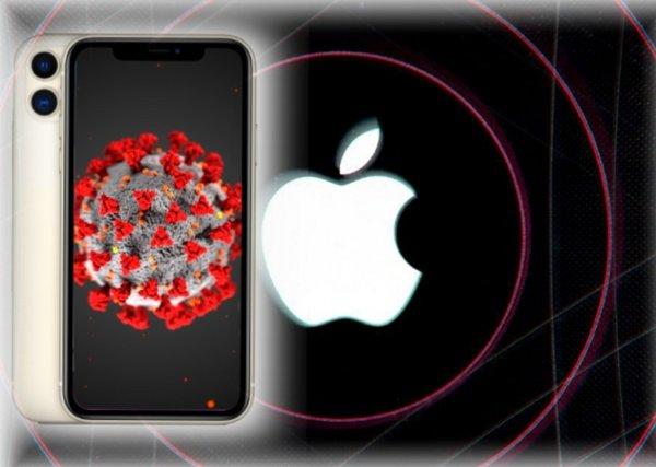 Apple выпустила новую iOS 13.5 и iPadOS 13.5
