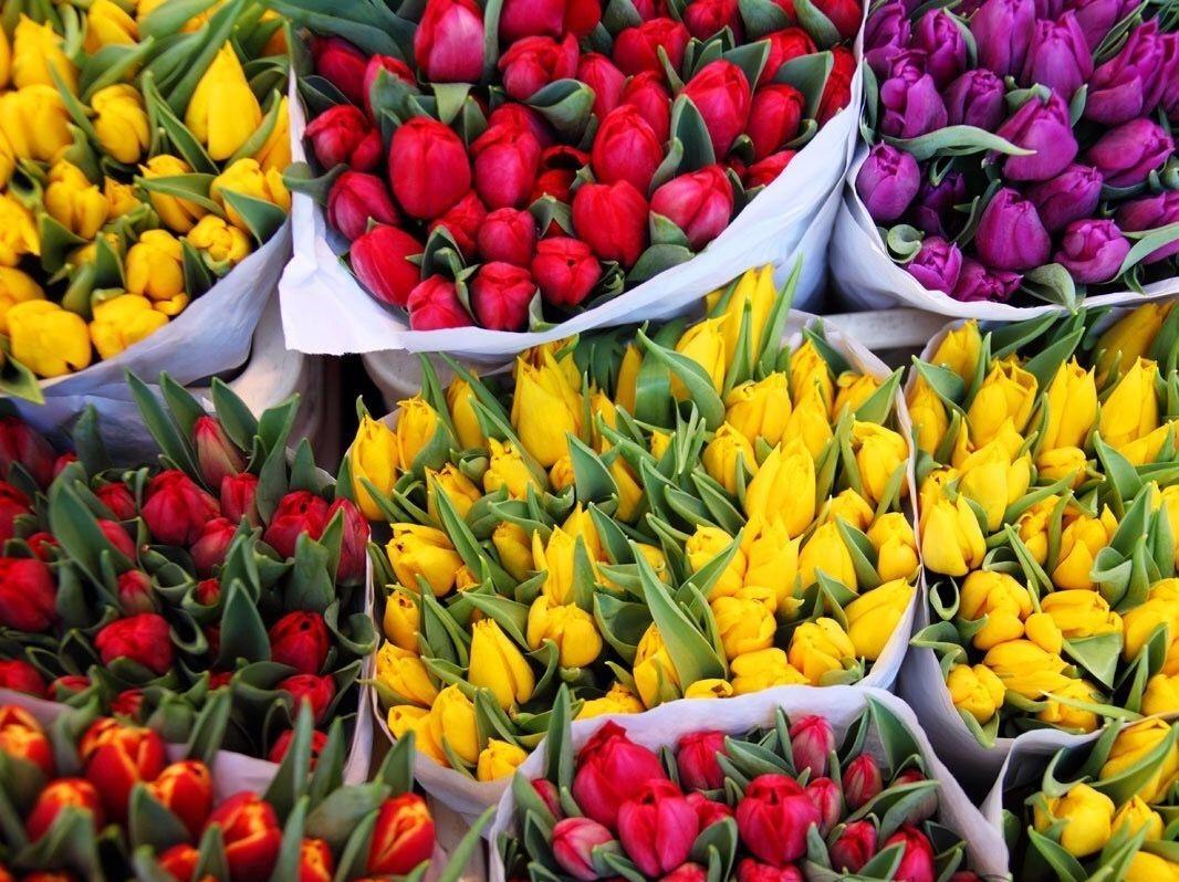 Букеты из тюльпанов и других цветов оптом к 8 марта